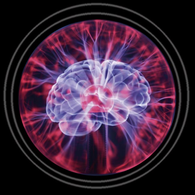 Inside the Brain — Our Brains are energy hogs.