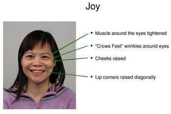 Decoding facial expressions